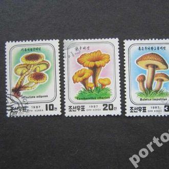 3 марки Корея 1987 грибы