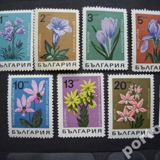 7 марок Болгария цветы н/гаш