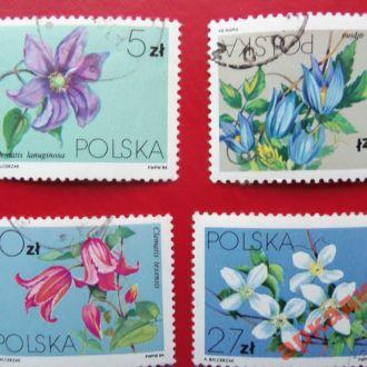 марки -флора -Польша  -4 марки-без указания года