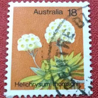марки Австралия флора цветы с 1 гривны