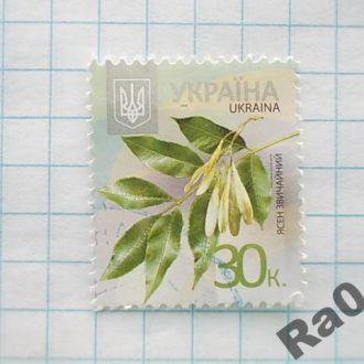 Марка почта Украина 2013 Ясен звичайный Ясень обык