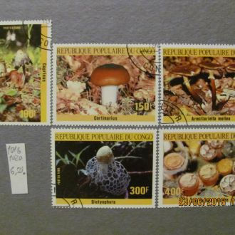 конго грибы 1985 гаш