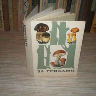 Тойбис В. За грибами. кул