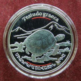 Армения 100 драм Черепаха серебро тираж 3000 штук