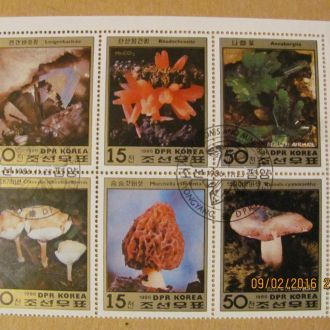 кндр минералы- грибы 1986 гаш