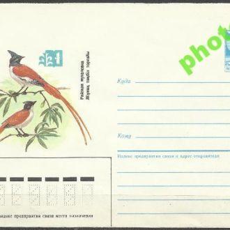 СССР 1985 ХМК* 85-256 фауна птицы мухоловка
