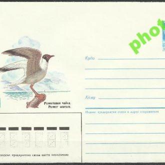 СССР 1985 ХМК* 85-257 фауна птицы чайка