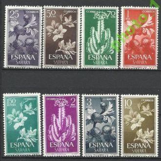Сахара испан. 1962 флора кактусы 8м.**