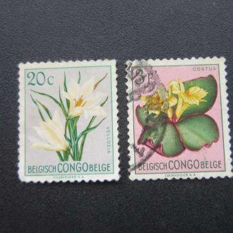 2 марки Конго цветы