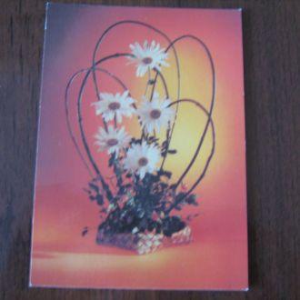 Цветы , 1986 г.