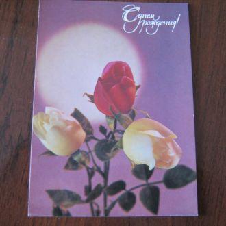 Открытка С днем рождения,цветы,розы, 1988 г.,