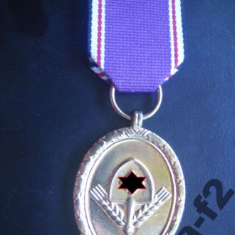 Третий Рейх Медаль Трудовой Фронт копия