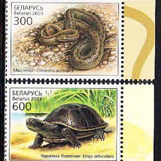 Беларусь 2003 фауна рептилии медянка черепаха