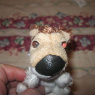 собака пес коллекционная маленький кожаный носик