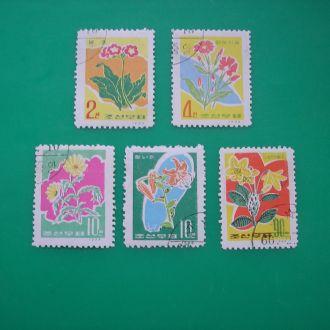 Вьетнам 1966 Цветы