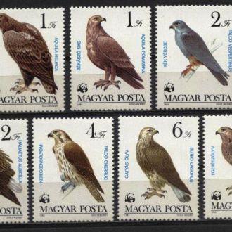 Венгрия Фауна  Птицы 1983 MNH