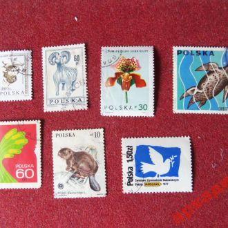 марки-Польша 7 марок