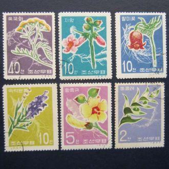 6 марок Корея 1967 цветы