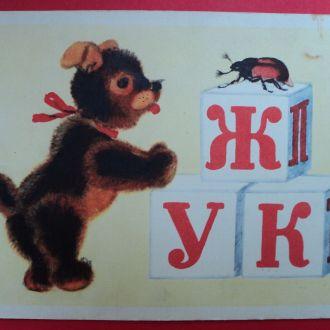 Кто Это Ушакова Мишка Игрушки Жук 1955 Чистая