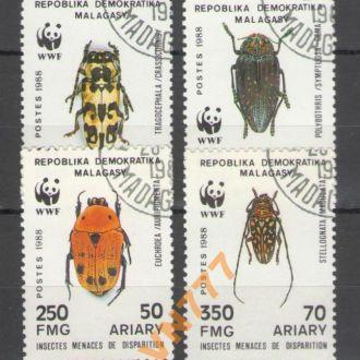 Мадагаскар 1988 WWF Фауна жуки насекомые 30 евро