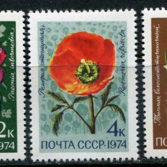 СССР 1974 Флора Цветы Средней Азии MNH