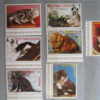 гвинея 1976  фауна кошки коты