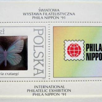 butterfly насекомые бабочки метелики ПОЛЬША