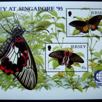 butterfly насекомые бабочки метелики jersey