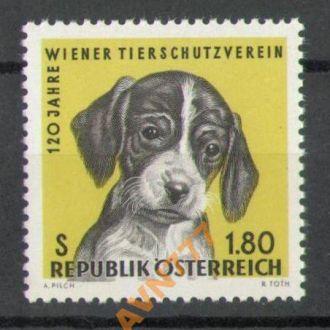 Австрия 1966 Фауна Собаки серия MNH