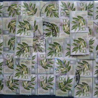 Украина  стандарт листья флора G6