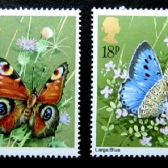 butterfly насекомые бабочки метелики англия