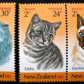 фауна кошки коты новая зеландия на сл т