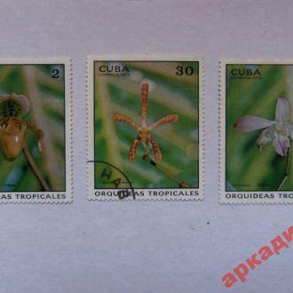 марки-Куба  с 1гр 1973 год(А1) флора
