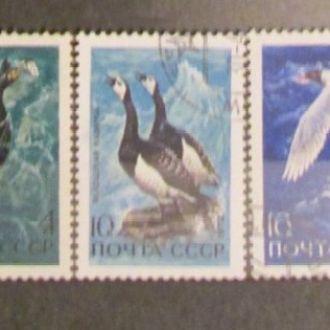СССР 1972 Птицы