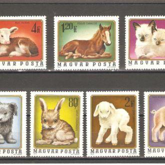 Фауна  Венгрия  1974г. MNH  (см. опис.)