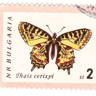 Фауна. Бабочки марки