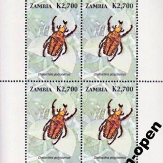 Zambi/ Замбия - Жук Chelorrhina polyphemus бл 2005