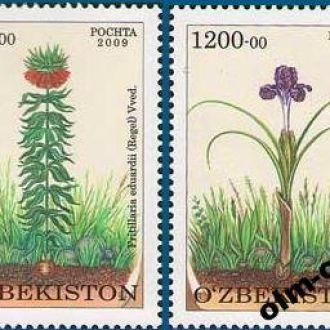 Uzbekistan / Узбекистан - Цветы 2м 2010 OLM-OPeN