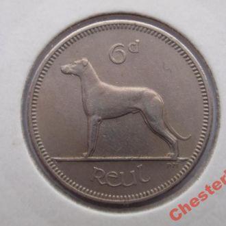 Ирландия 6 пенсов 1959 Irish Wolfhound отличное состояние