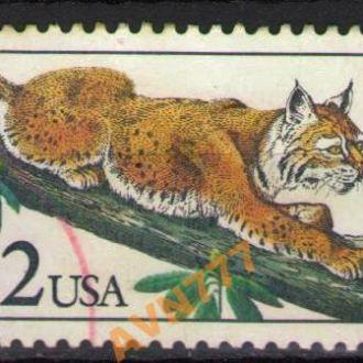 США 1990 Фауна Кошки Рысь