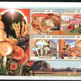 Нигер 1999 флора грибы MNH