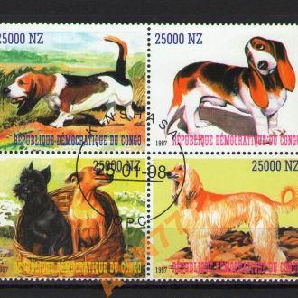 Конго 1997 Собаки  кварт сцепка