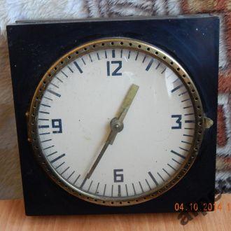 часы настольные СКБ ЗООВЕТЕРИНАРНЫЕ
