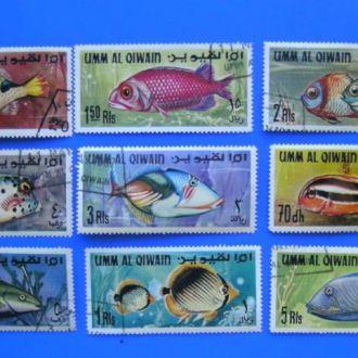 Фауна Экзотические рыбки