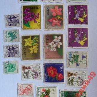 марки-Польша 20 марок 1965г и др(АГ)