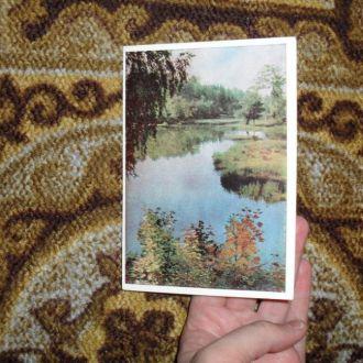 Лесное озеро Фото Н.Амосова 1965г.