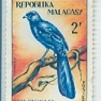 МАДАГАСКАР 1963 ПТИЦЫ ФАУНА