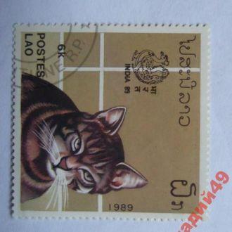 марки- Лаос 1 гр(к5)--кошка-1989год