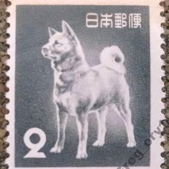 марки Япония фауна собака