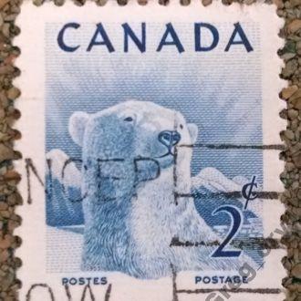 марки Канада фауна стандарт медведь с 1 гривны